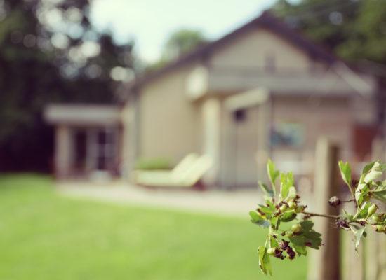 Vakantiewoning vakantiehuis la Brindille Durbuy ardennen alleenstaand huurwoning gezellig tuin te huur